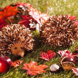 Anleitung Süße Herbstigel Häkeln