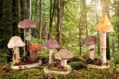 Pilze aus Modelliermasse - Schmuckbild