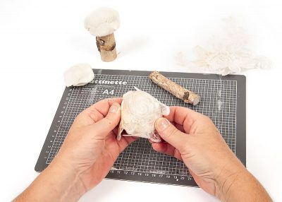 Pilze aus Modelliermasse - Schritt 3