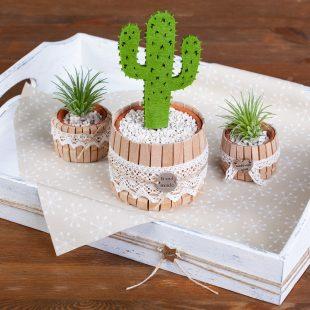 Kaktus Dekoration selber machen